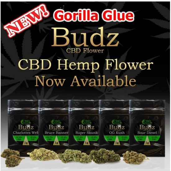 buy gorilla-glue-cbd-flower-bud-1g